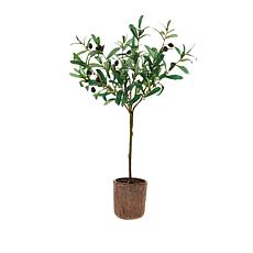 "Patricia Altschul 31"" Artificial Olive Tree"