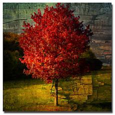 """Philippe Sainte-Laudy Medium-Sized """"Autumn Red"""" Print"""
