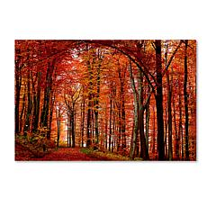 "Philippe Sainte-Laudy Medium-Sized ""The Red Way"" Print"