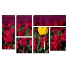 "Pierre Leclerc ""Yellow Tulip"" Art Collection - Set of 6"