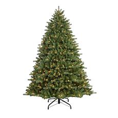 Puleo 7-1/2 ft. Pre-Lit Davidson Fir Premier Artificial Christmas Tree