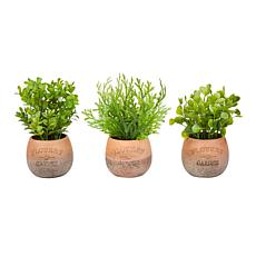 Pure Garden Set of 3 Greenery Arrangements