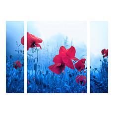 "Sainte-Laudy ""Jam for Poppies"" Panel Art - 24"" x 32"""