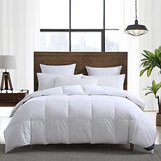 Smithsonian Sleep Collection White Goose Down & Feather Comforter King