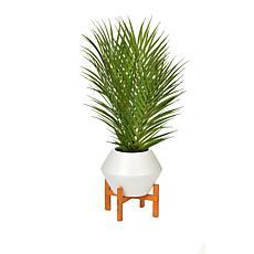 South Street Loft Palm Leaves in Flower Pot