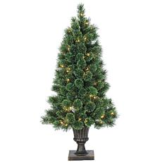 Sterling 4' Clear Lighted Potted Cashmere Pine Tree