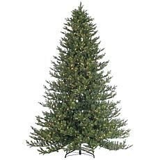Sterling 9' Rockford Pine Lighted Christmas Tree
