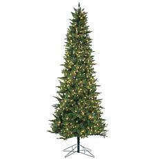 Sterling 9' Salem Spruce Lighted Christmas Tree