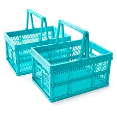 StoreSmith Set of 2 Folding Storage Baskets