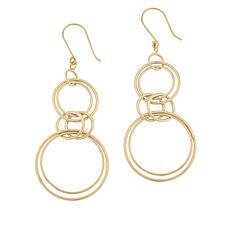 Technibond® Linear Circle Drop Earrings