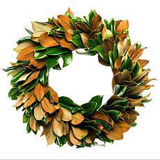 """Van Zyverden 24"""" Classic Magnolia Wreath"""