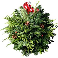 Van Zyverden Fresh Cut Pacific Northwest Deck the Halls Kissing Ball