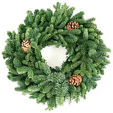 "Van Zyverden Live Fresh Cut 16"" Noble Fir Wreath with Pine Cones"