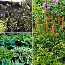 VanZyverden Color Your Garden Green Collection 10-piece Bulb Set