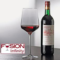 Wine Enthusiast Set of 4 Fusion Infinity Wine Glasses