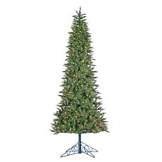 Winter Lane 10' Lighted Salem Spruce Tree with Power Pole