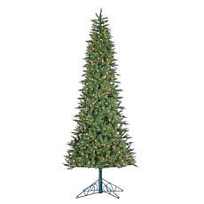 Winter Lane 10' Lighted Salem Spruce Tree with Power Pole