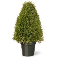 Winter Lane 2-1/2' Artificial Topiary Juniper Tree