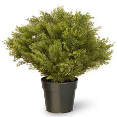"Winter Lane 24"" Artificial Topiary Globe Juniper"