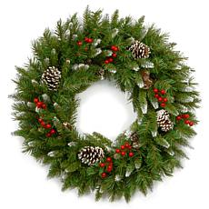 "Winter Lane 24""  Frosted Berry Wreath"
