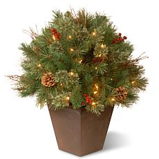 "Winter Lane 24"" Glistening Pine Porch Bush w/Lights"