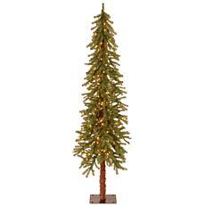 Winter Lane 6' Hickory Cedar  Tree w/Lights