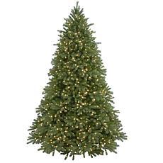 Winter Lane 7-1/2'Jersey Fraser Tree (1250 Lights)