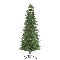 Winter Lane 9' Pre-Lit Narrow Augusta Pine Tree - 700 Clear Lights