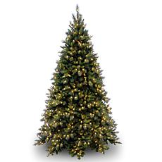 Winter Lane 9' Tiffany Fir Medium Tree w/Lights