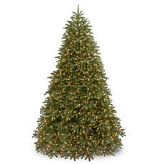 Winter Lane 9'Jersey Fraser Fir Tree w/Lights