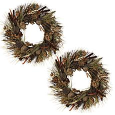 "Winter Lane Set of 2 30"" Woodland Wreaths"