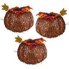 """Winter Lane Set of 3 Lighted Twig Pumpkins - 10"""""""