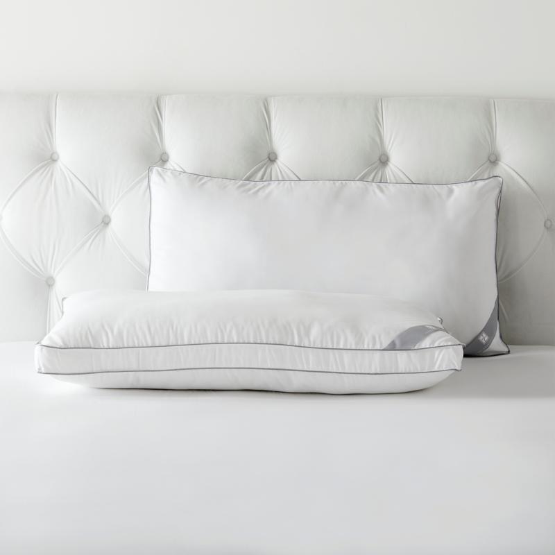 Concierge Pure Assure 2-pack Down Alternative King Pillows