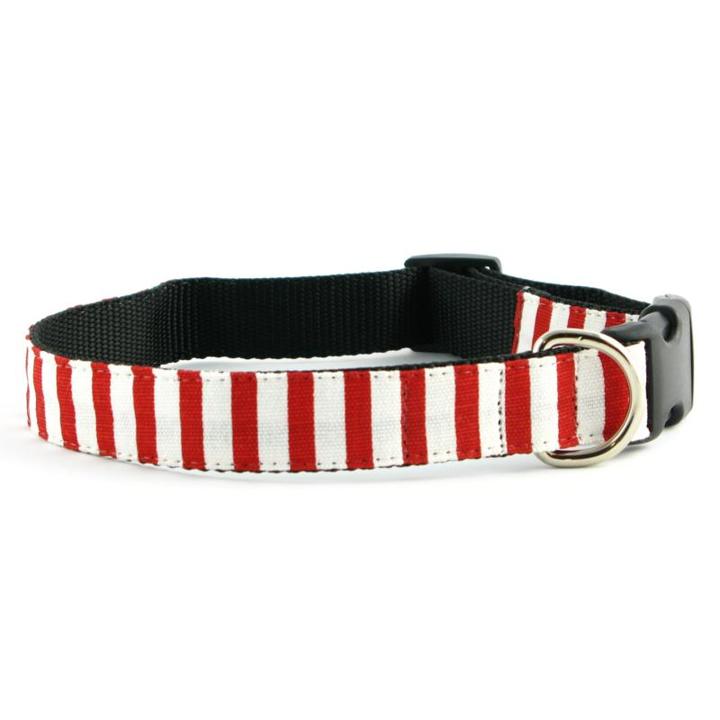 Isabella Cane Candy Cane Stripe Dog Collar - XS