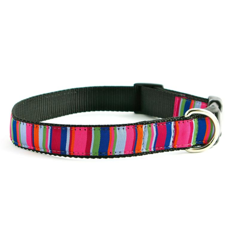 Isabella Cane Dog Collar: ZZ-Stripe-XL