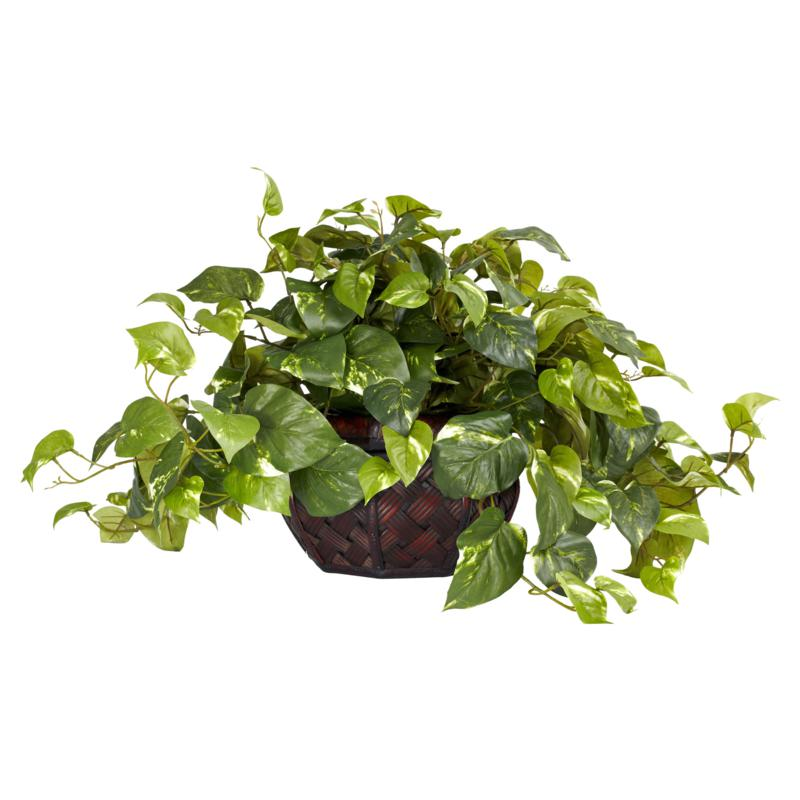 Pothos with Decorative Vase Silk Plant