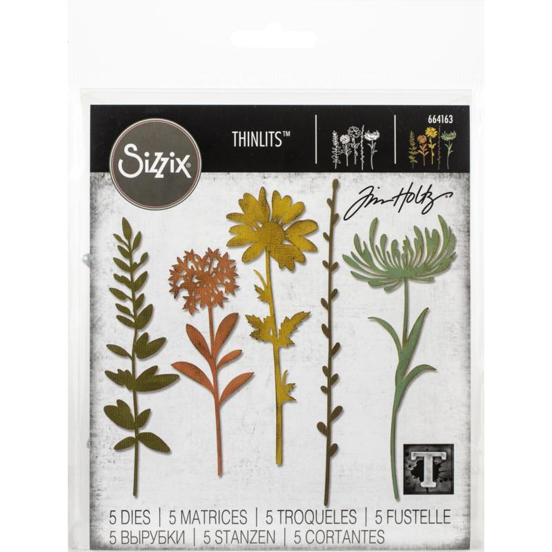 Sizzix Thinlits Dies By Tim Holtz 5-pack - Wildflower Stems #1